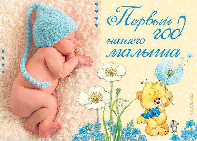 Пляцковский М.С., Александрова З.Н., Карганова Е.Г. - Первый год нашего малыша ДМ обложка книги
