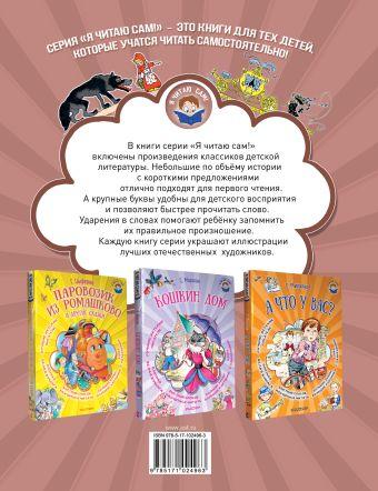 Волшебные сказки в лучших иллюстрациях Шарль Перро, Братья Гримм