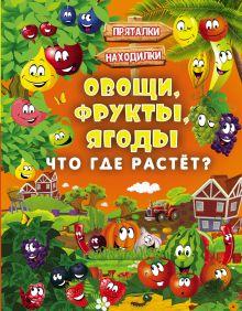 Овощи, фрукты, ягоды. Что где растёт?