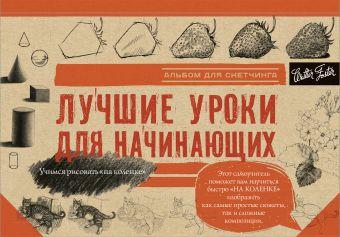 Лучшие уроки для начинающих Бородычева И.С., Степанова А.Н.