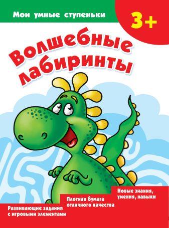 Дмитриева В.Г. - Волшебные лабиринты обложка книги