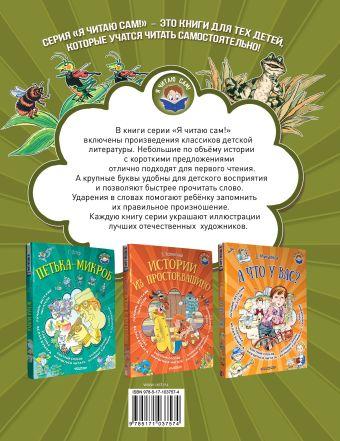 Лягушка-путешественница и другие сказки о животных В. Гаршин, Бианки В.В., Заходер Б.В.