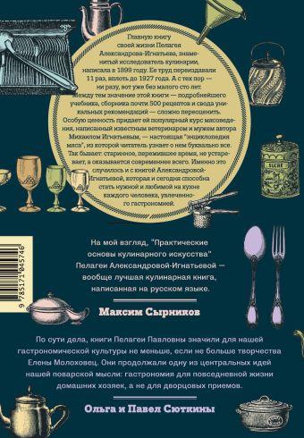 Практические основы кулинарного искусства Пелагея Александрова-Игнатьева