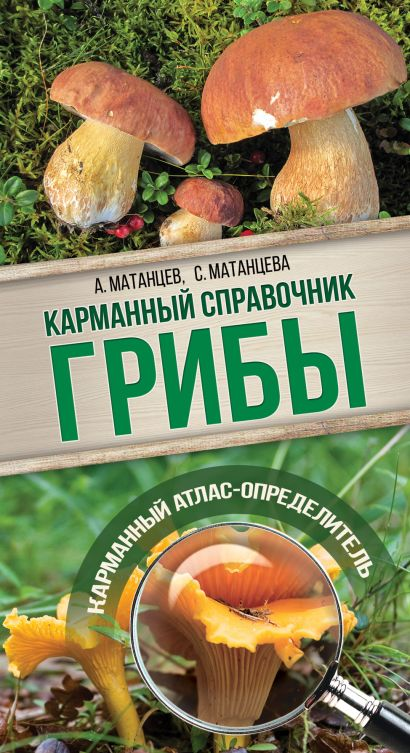 Грибы. Карманный справочник-определитель - фото 1