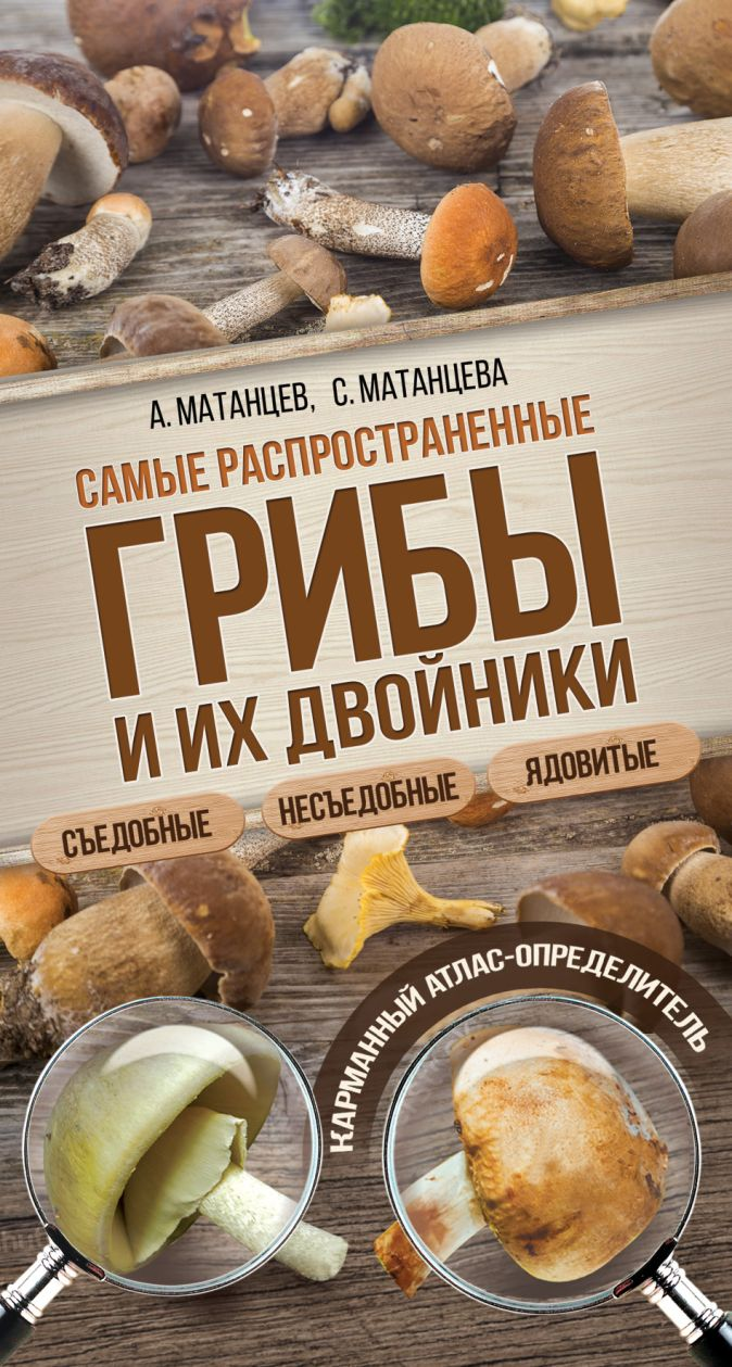 Самые распространенные грибы и их двойники съедобные, несъедобные, ядовитые Матанцев А.Н., Матанцева С.Г.