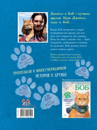 Кот по имени Боб - настоящий друг Джеймс Боуэн