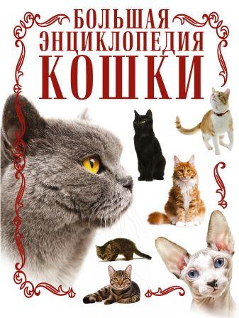 Д. Смирнов - Кошки. Большая энциклопедия обложка книги
