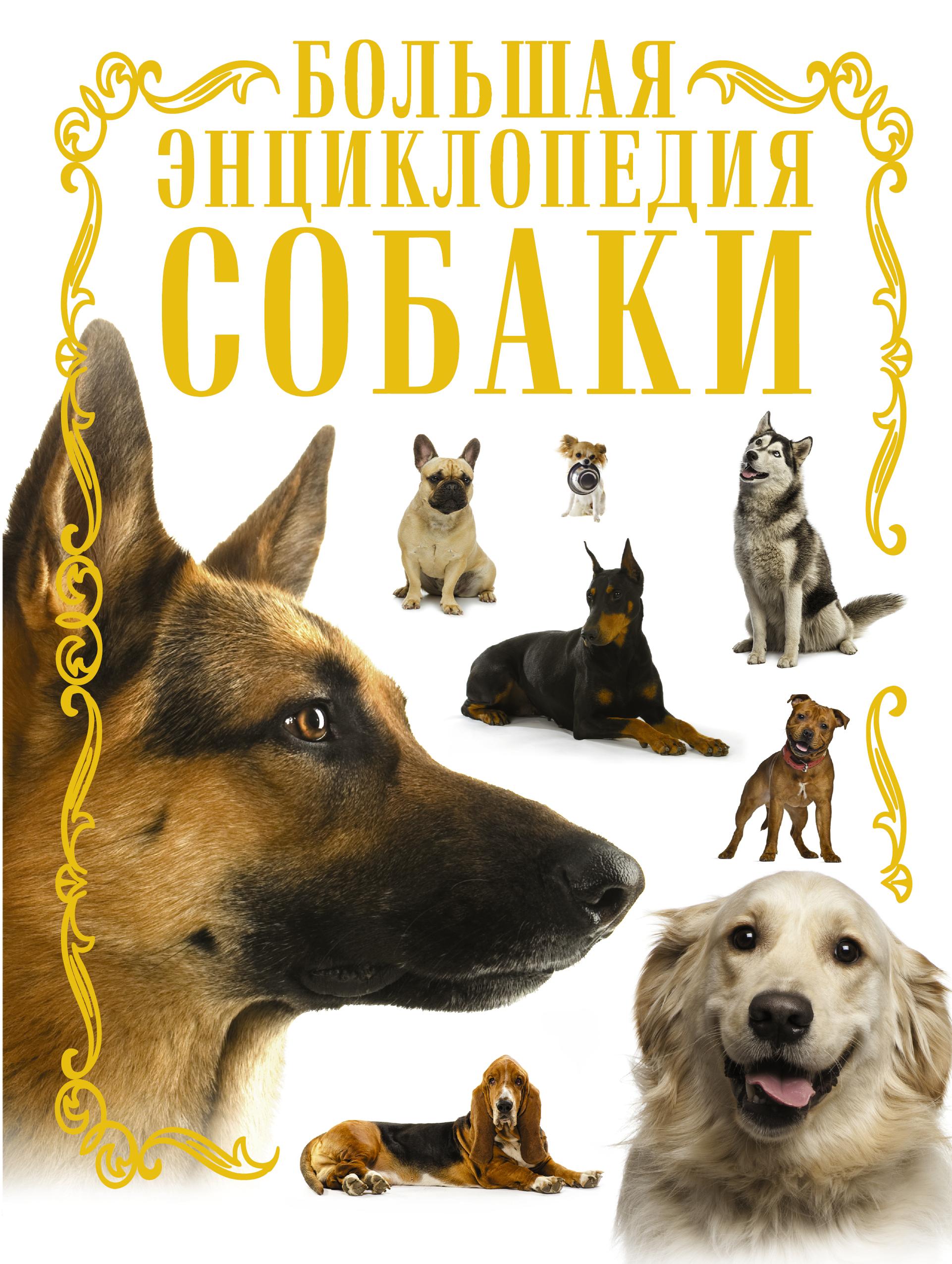 Собаки. Большая энциклопедия от book24.ru