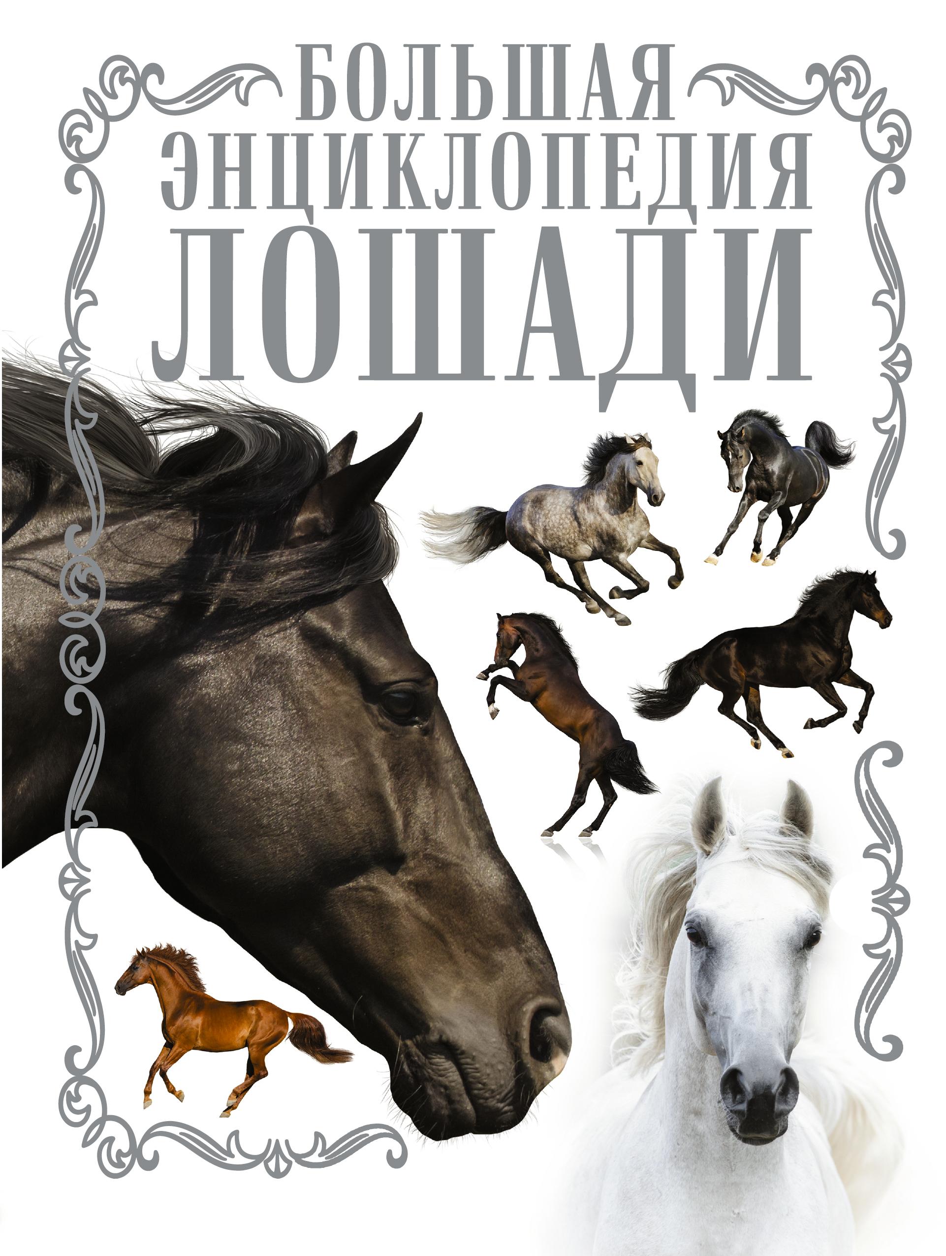 Спектор А.А. Лошади. Большая энциклопедия