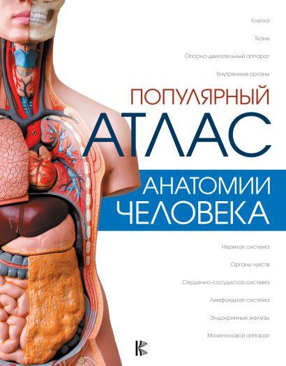 Популярный атлас анатомии человека - фото 1