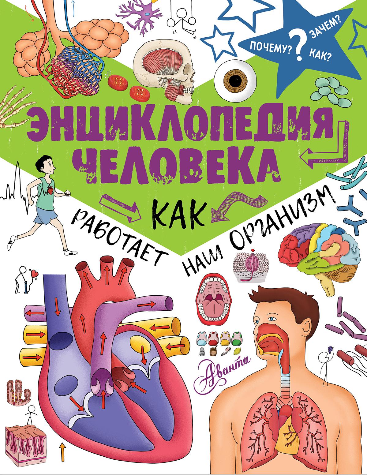 Фарндон Д. Энциклопедия человека: как работает наш организм прибор рн для определения в организме человека купить