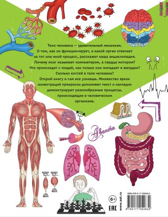 Энциклопедия человека: как работает наш организм Фарндон Джон