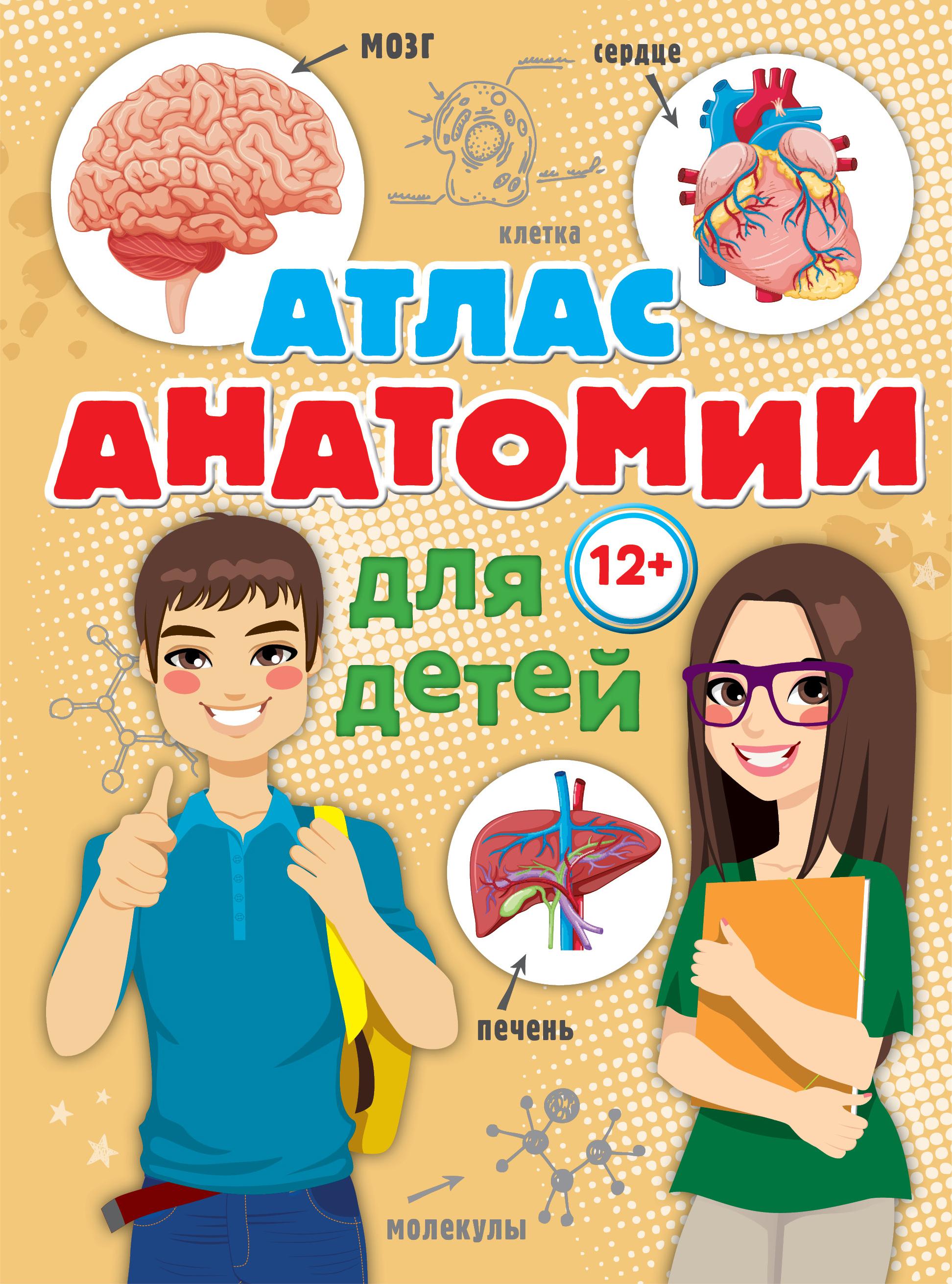 Атлас анатомии для детей