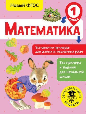 Кулаков А.А. - Математика. Все цепочки примеров для устных и письменных работ. 1 класс обложка книги
