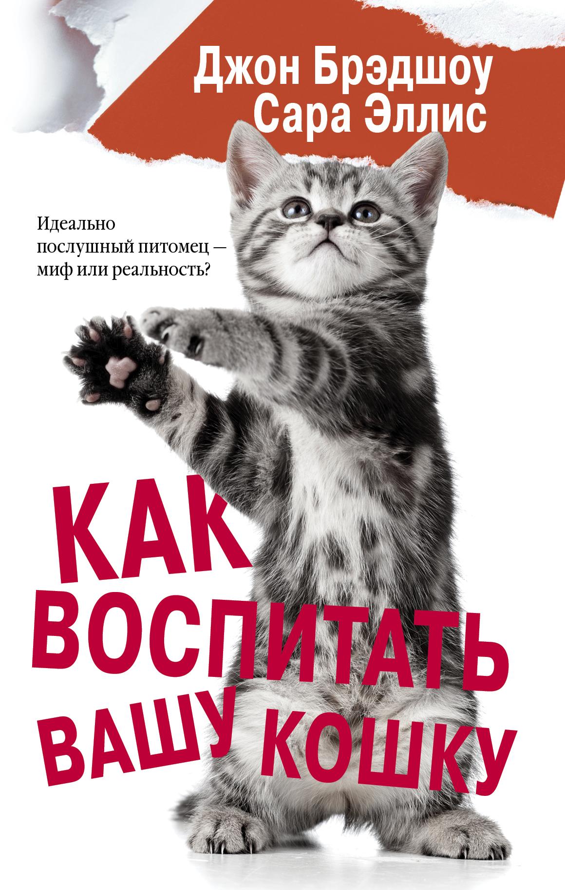 Джон Брэдшоу, Сара Эллис Как воспитать вашу кошку тостер philips hd2581 90 черный