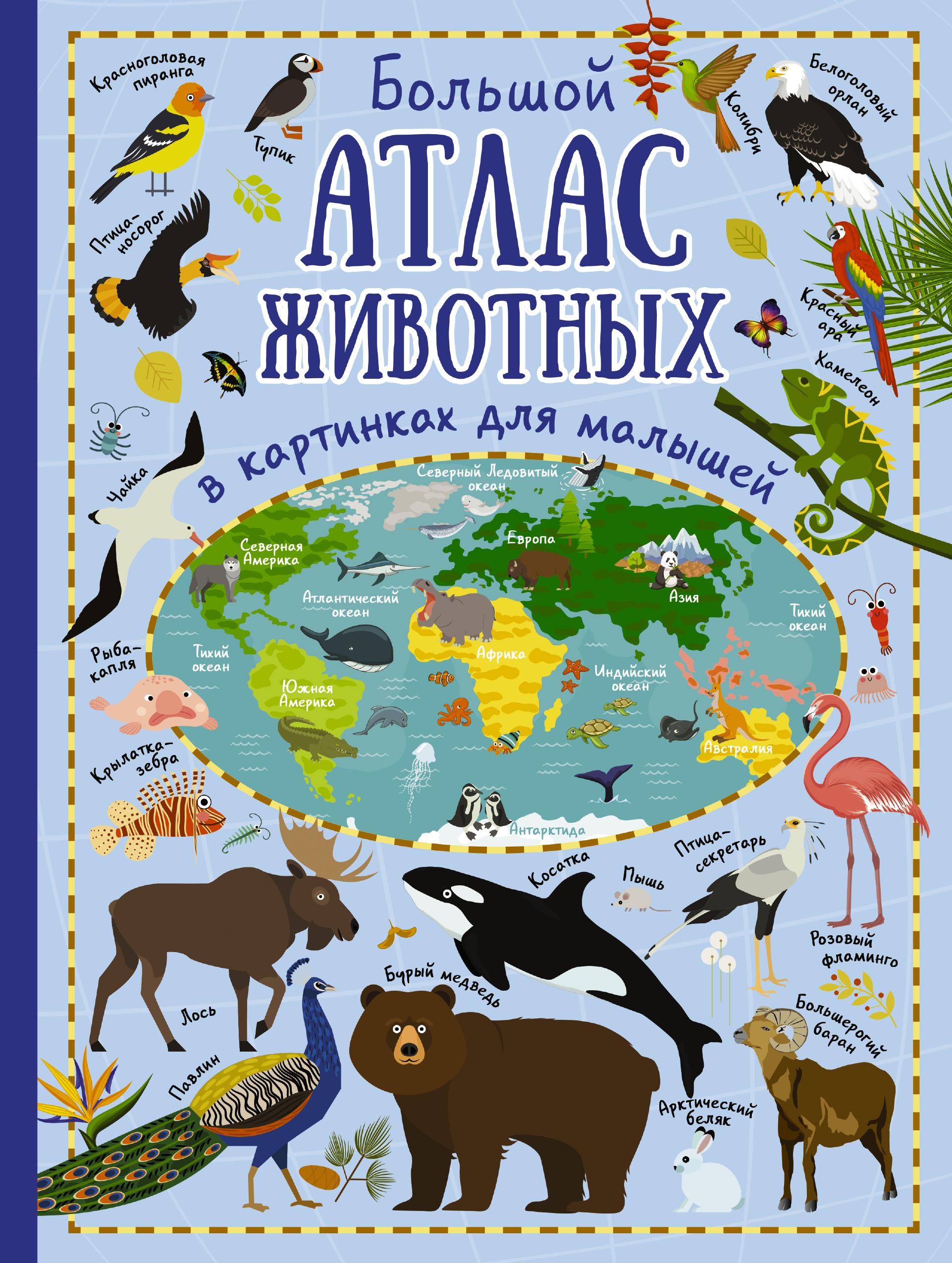 Большой атлас животных в картинках для малышей