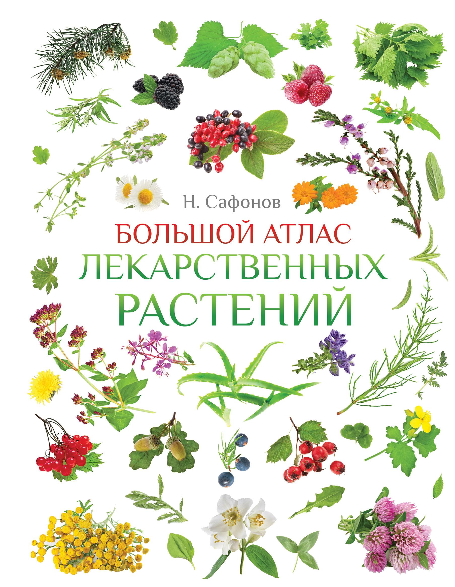 Большой атлас лекарственных растений