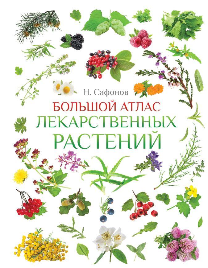 Сафонов Н.Н. - Большой атлас лекарственных растений обложка книги