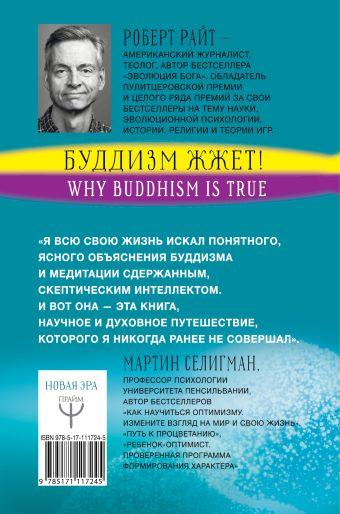 Буддизм жжет! Ну вот же ясный путь к счастью! Нейропсихология медитации и просветления Роберт Райт