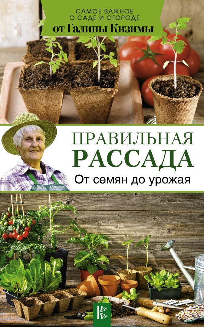 Кизима Г.А. - Правильная рассада. От семян до урожая обложка книги