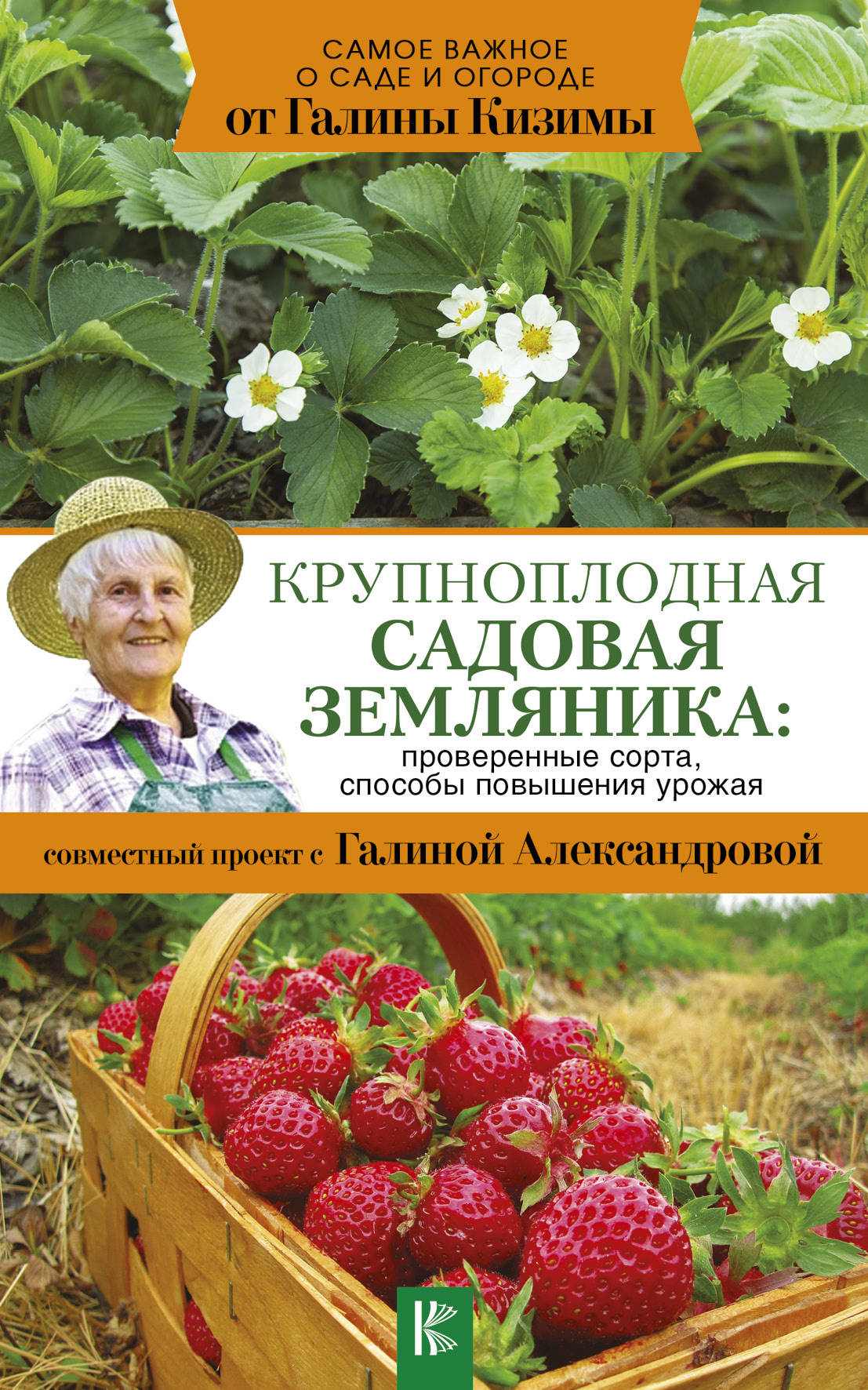 Крупноплодная садовая земляника: проверенные сорта, способы повышения урожая