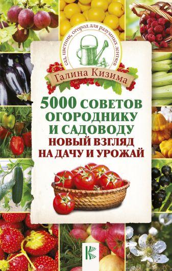 Кизима Г.А. - 5000 советов огороднику и садоводу. Новый взгляд на дачу и урожай обложка книги