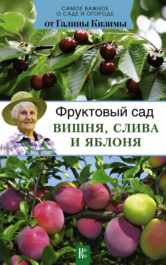 Кизима Г.А. - Фруктовый сад. Вишня, слива и яблоня обложка книги