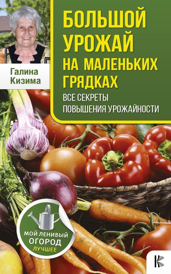 Кизима Г.А. - Большой урожай на маленьких грядках. Все секреты повышения урожайности обложка книги