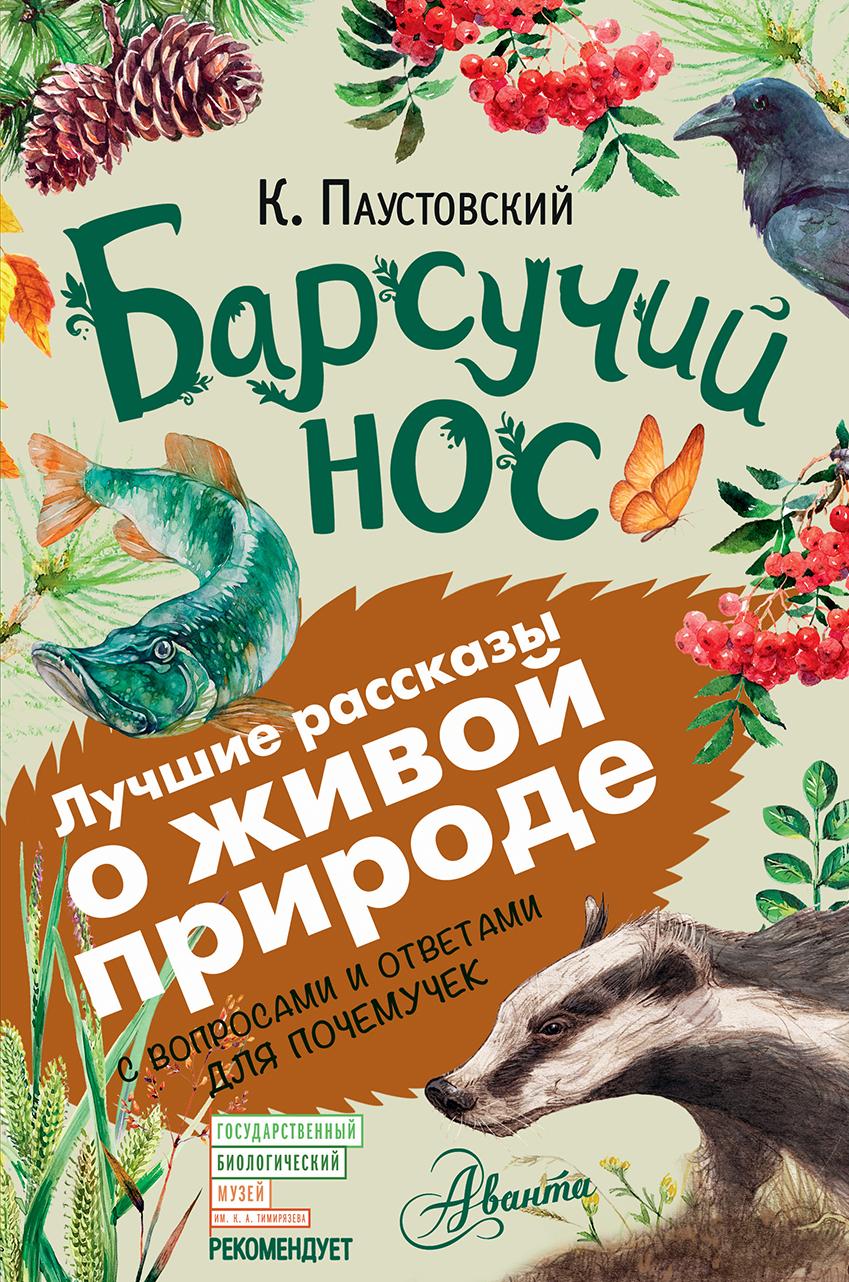 Паустовский К.Г. Барсучий нос приточная вентиляция купить в рязани