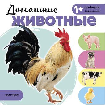 Домашние животные Станкевич С.А.