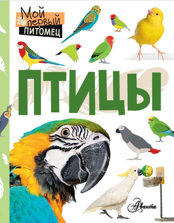 Аронова Наталия Леонидовна Птицы