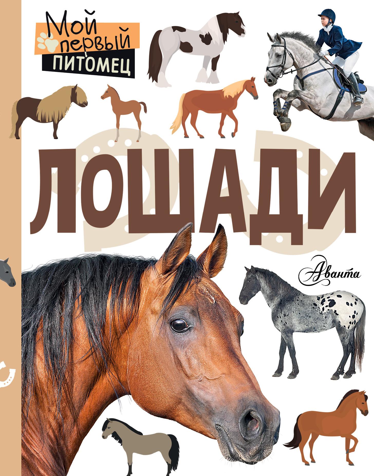 Ксения Сергеева Лошади
