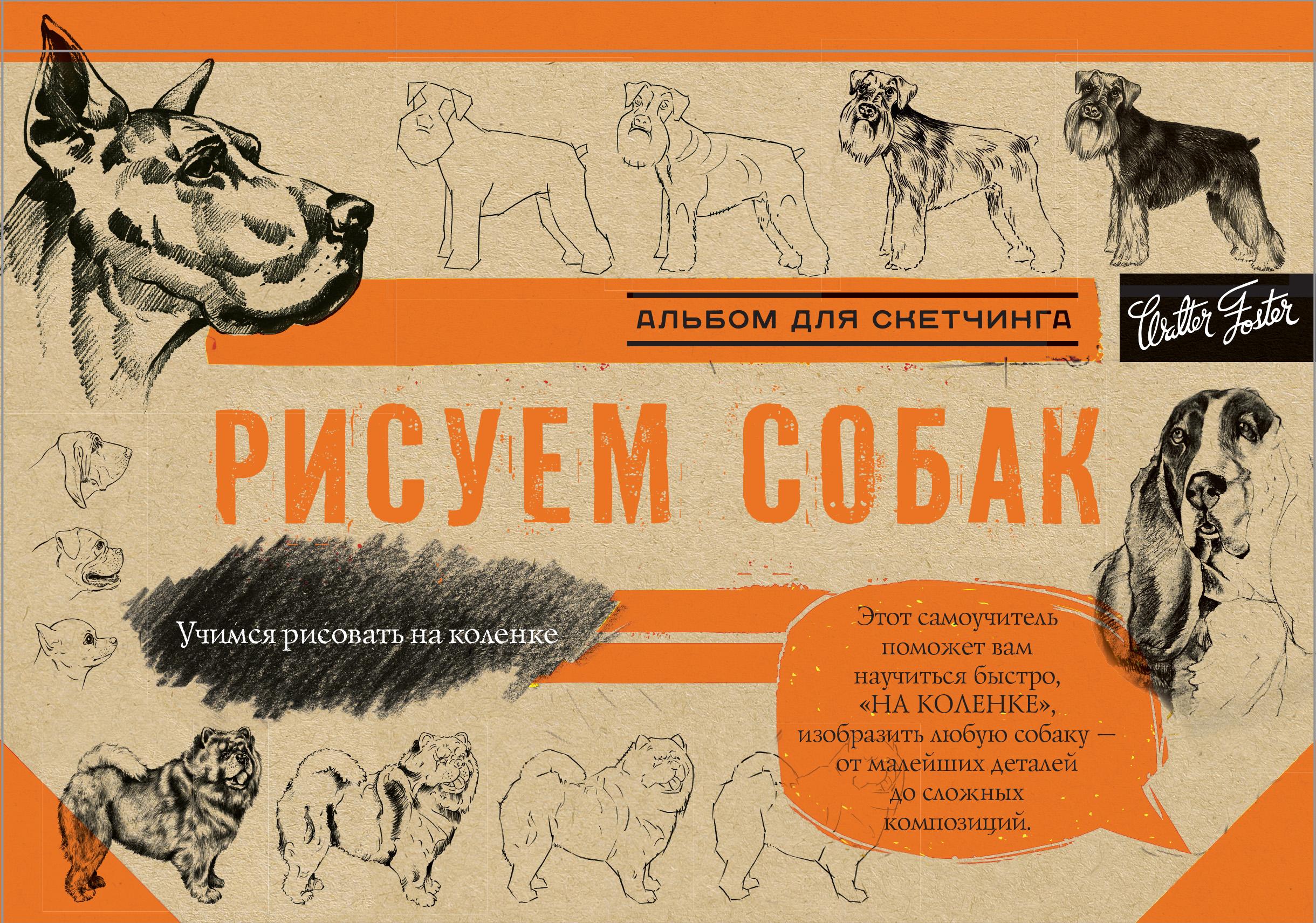 Рисуем собак ( .  )