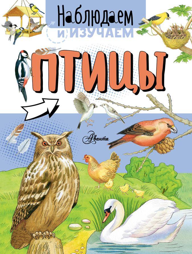 Алиса Ткачева - Птицы обложка книги