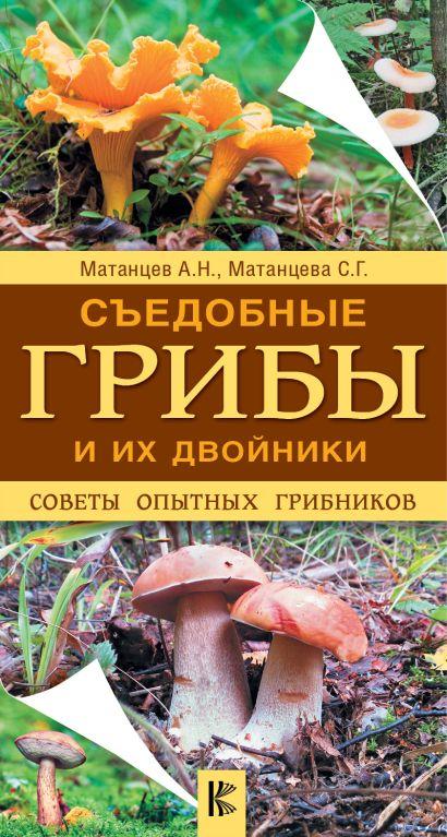 Съедобные грибы и их двойники. Советы опытных грибников - фото 1