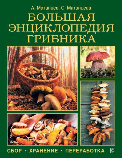 Большая энциклопедия грибника: сбор, хранение, переработка - фото 1