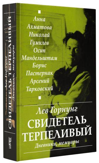 """Горнунг Л.В. - """"Свидетель терпеливый..."""" Дневники, мемуары обложка книги"""