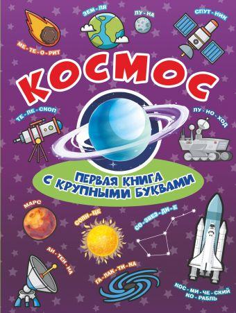 Космос Первая книга с крупными буквами Хомич Е.О., Лобанова Л.Л.