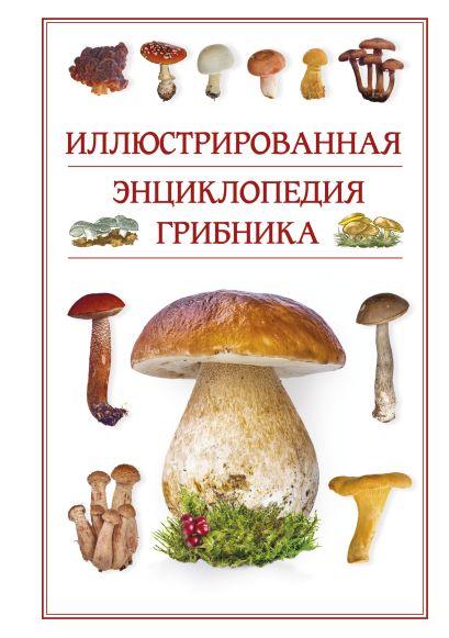 Иллюстрированная энциклопедия грибника. - фото 1