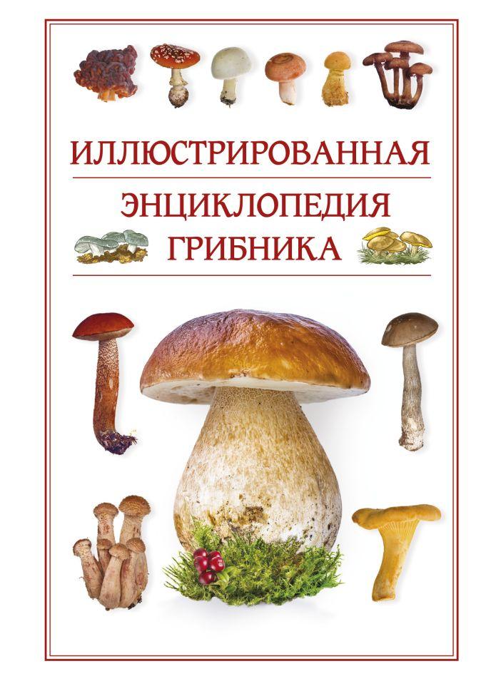 Иллюстрированная энциклопедия грибника. Поленов А.Б.