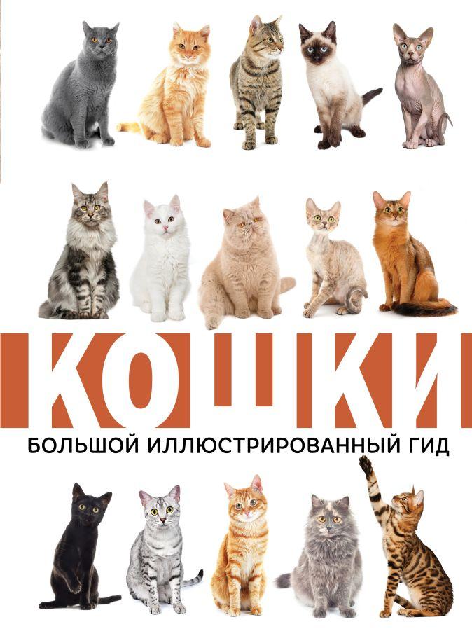 Непомнящий Н.Н. - Кошки обложка книги