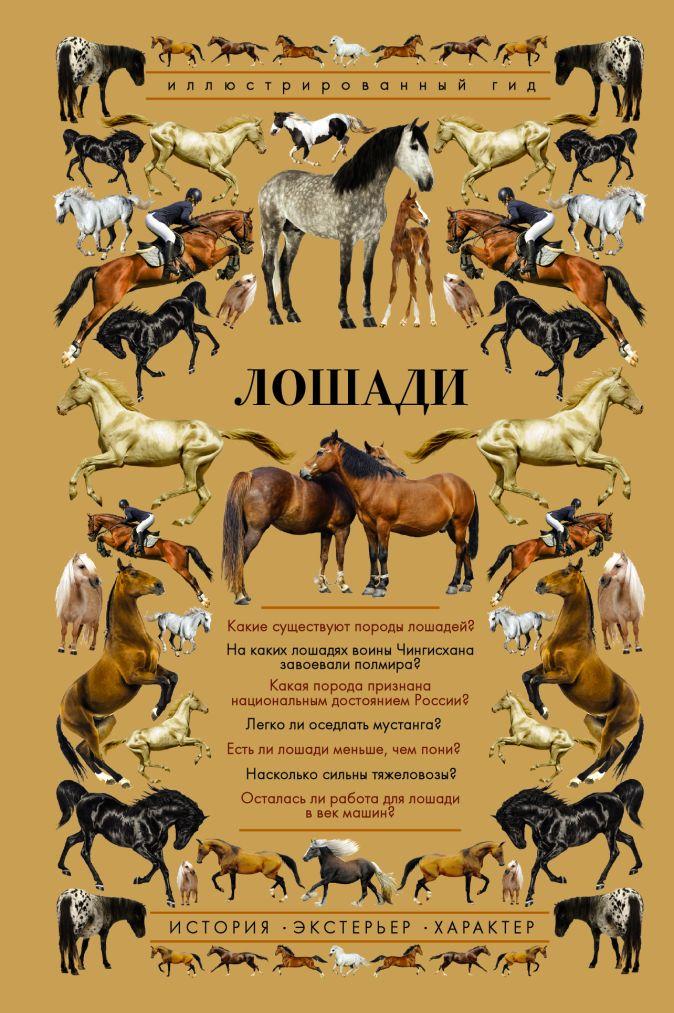 Лошади. Иллюстрированный гид