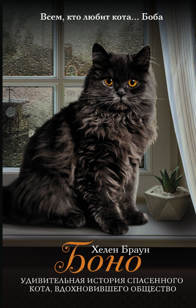 Браун Х. - Боно. Удивительная история спасенного кота, вдохновившего общество обложка книги