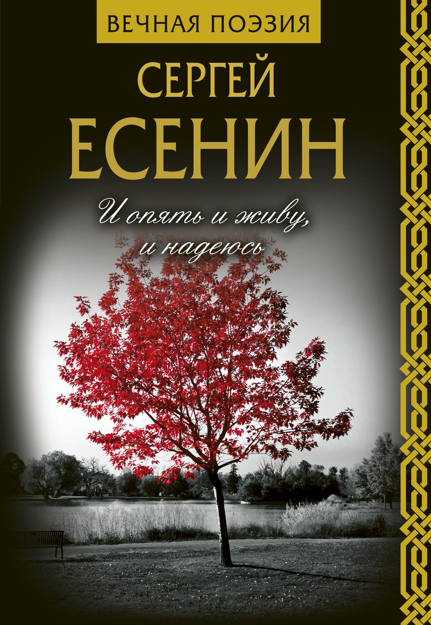 Сергей Есенин И опять и живу, и надеюсь есенин с сергей есенин сочинения 1910 1925 годов