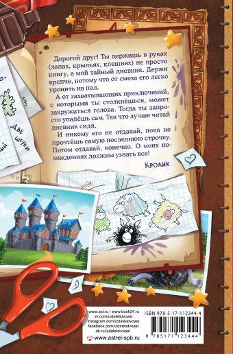 Книга Кролика про Кролика с рисунками и стихами Кролика. Фея-колтунья и волшебный портал Катя Матюшкина, Катя Оковитая