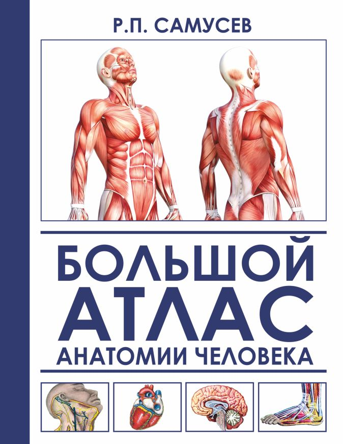 Большой атлас анатомии человека Самусев Р.П., Агеева В.А.