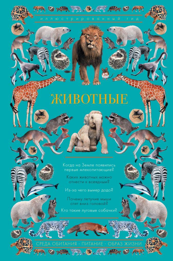 Чудова А. - Животные. Иллюстрированный гид обложка книги