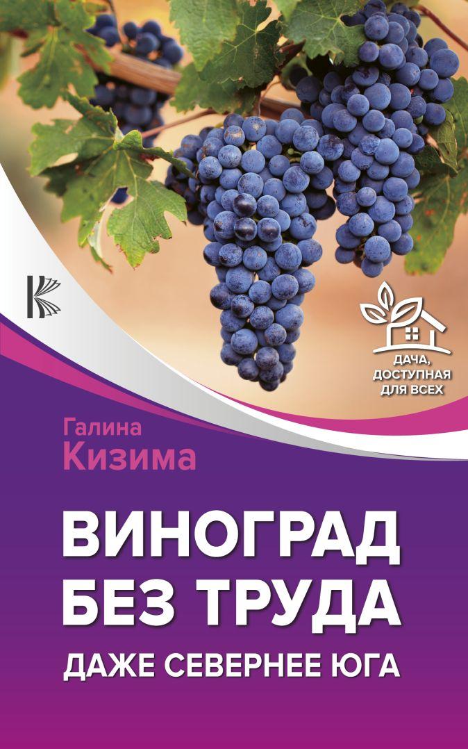 Галина Кизима - Виноград без труда. Даже севернее юга обложка книги