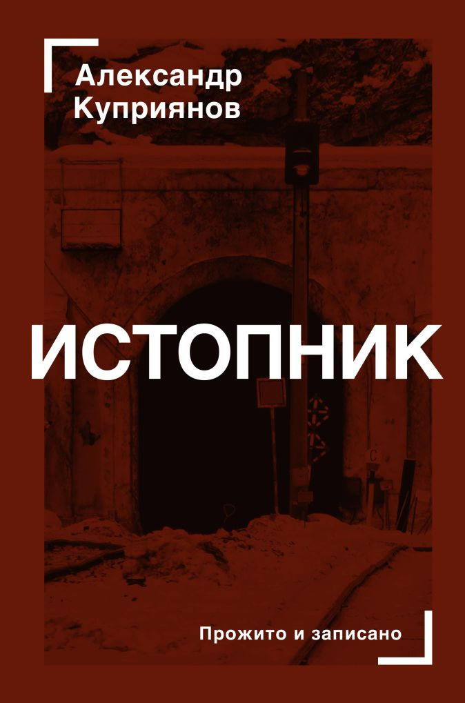 Александр Куприянов - Истопник обложка книги