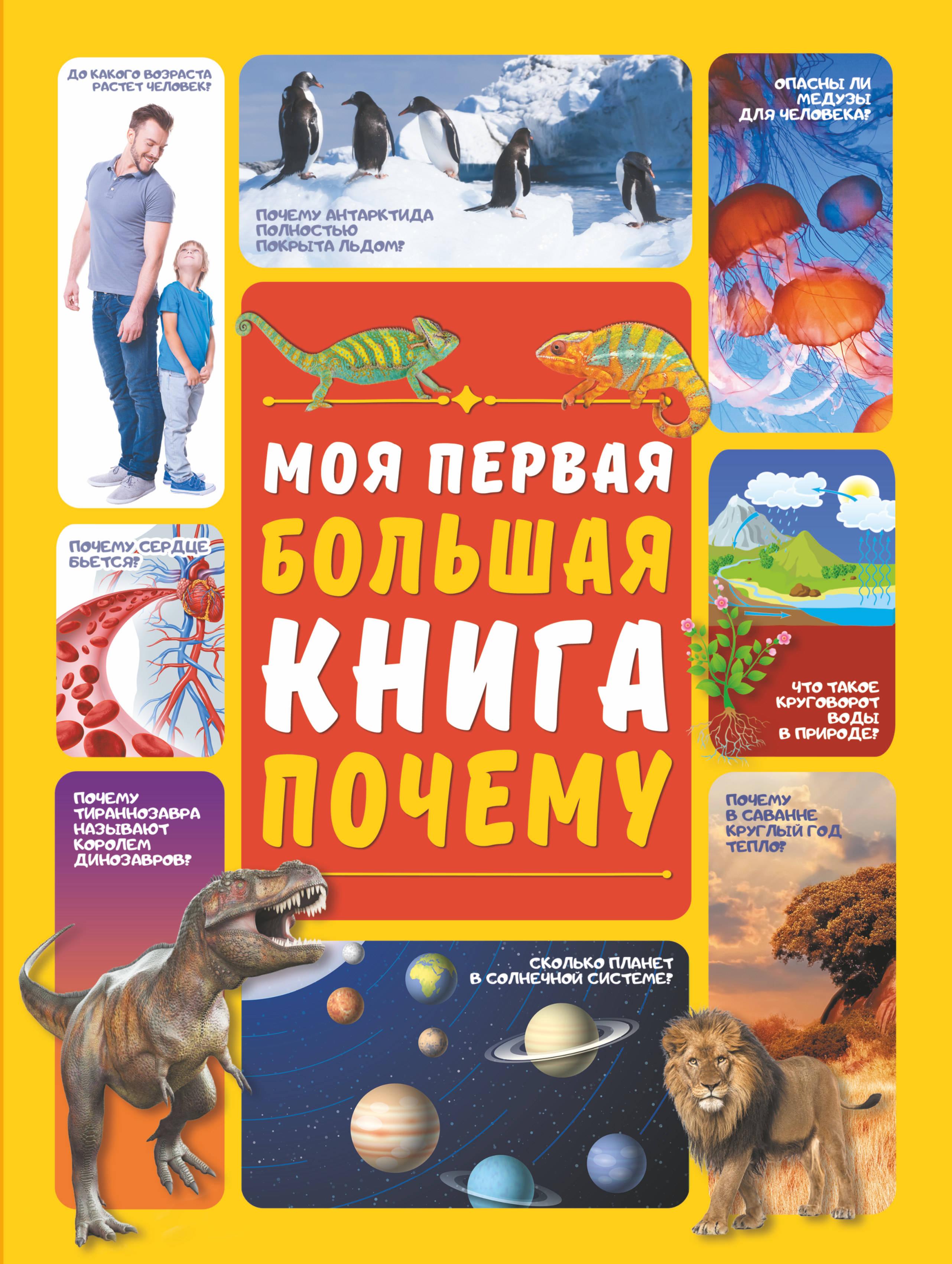 Фото - Д. Ермакович Моя первая большая книга ПОЧЕМУ чудесная планета земля